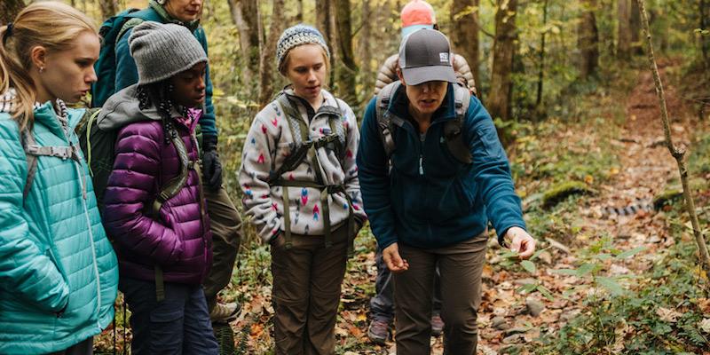 обучение детей в походе интересным фактам о местной флоре и фауне